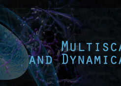 Molecular Informatics and Dynamical Systems Theory
